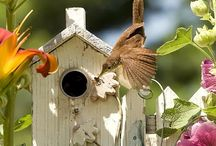 It's a birdhouse thing...love.