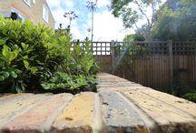 Modern classic garden landscaping in Clapham