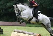 Xc jumps