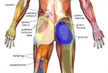 massage tricker point on body