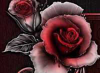 Róże i inne dekoracyjne