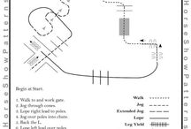 Horses - Pattern Work