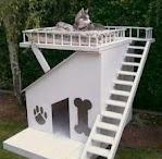 Köpek kulübeleri