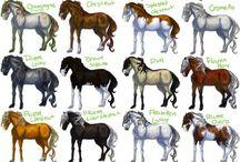 Mantelli cavalli