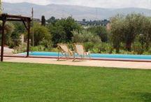Sicilia / Search in the list of accommodations your perfect home in Sicilia. http://www.appartamentivacanzeitalia.it/regione.php?id=15