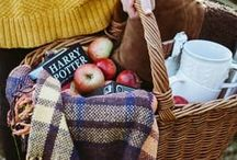 Cafe picnic2017aw