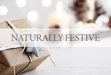 Naturally Festive / Make every holiday beautiful with these DIY & décor ideas. / by Eminence Organic Skin Care