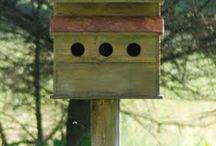 bird house small house