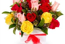 Flowers Delivery Online / Send Colourful flowers hand delivered at your door-step to signfy Happiest and Heartfelt emotions