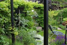 Pergola in garden