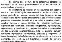 neuroeducación