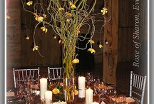 Wedding centerpiece / by Jennifer Ustal