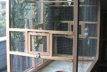 Bird cages - madár kalitka/volier