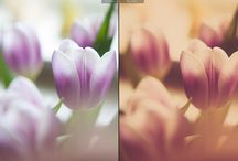 Actions & Presets / Adobe Photoshop Actions and Lightroom Presets from the blog!