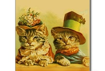 Meow Mix~ / Cat board for great cat images~