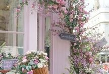 /Flowers/Gardens Florists/Designs/