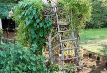 Garden Ideas / by Kathy Linger