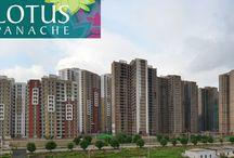 3c Lotus Panache Sector 110 Noida / Kumar Linkers (8010750750) Ready to move flats in 3c lotus panache, resale flats in Noida sector 110, resale flats in 3c lotus panache, flats for sale in sector 110