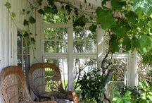 Uterum/trädgård pärongatan