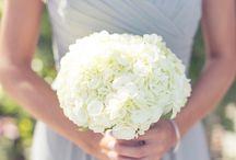 Flowers / by Meganne Price