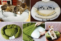 What do animals do to me.. / making a soft space for your pet ;) genial!