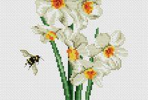 Narcissus/Daffodil cross stich