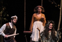 Into the Woods  / by Charleston Southern