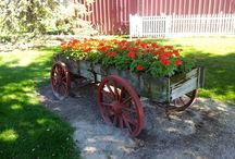 * Wagons as  Planters *