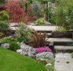 Terrace and Garden