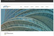 Performind Web Design / Professional Web Design