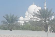 moladi in UAE - Abu Dhabi / moladi in UAE - Abu Dhabi - presenting at the Intercontinental Abu Dhabi construction conference