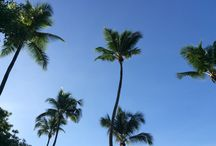Seychelles / Onde o azul e o verde se confundem...