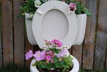 toilet blom bak