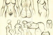 Fundamentals: Anatomy: Female