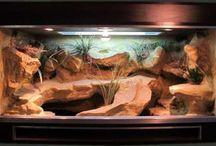 akvaria/teraria