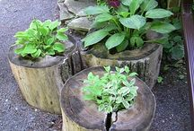 Gardens / Garden ideas