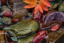 True Autumn landscapes