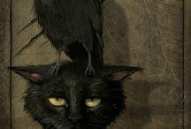 Noir&Dark Gotich
