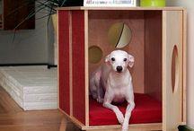 Casinha de Cachorro Moderna