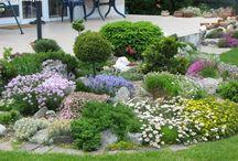 zahrada / zahrada, skalka, ohniště