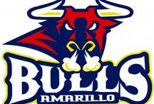 Local Sports / Covering local high school sports and your Amarillo Bulls, Amarillo Thunderheads, Amarillo Venom, and the West Texas A&M University Buffaloes. / by KAMR Local 4 News