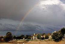 Idaho Rainbows