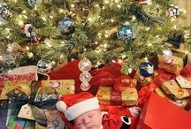 Christmas photos / by Andi Standring