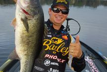 (tournament) bass fishing