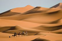 Scenes from the Silk Road / This is a collection of exotic people and places evocative of another time.