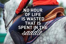Frases inspiradoras de cavalos