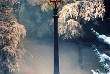 Winter scenes / by Jennifer Haas