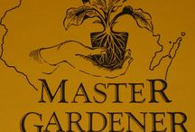 Wisconsin Master Gardener Program / Official Pinterest for the Wisconsin Master Gardener Program and Wisconsin Garden Horticulture team.  The Master Gardeners are trained volunteers who aid University of Wisconsin-Extension staff by helping people in the community better understand horticulture and their environment. The Wisconsin Garden Horticulture Team are teachers and community minded individuals who have a common goal of improving the environment and enriching quality of life.