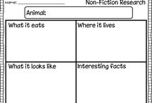 Second Grade Nonfiction Writing / by Christine D'Arcy