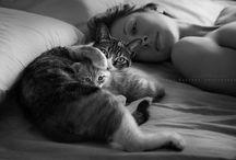 loves cat